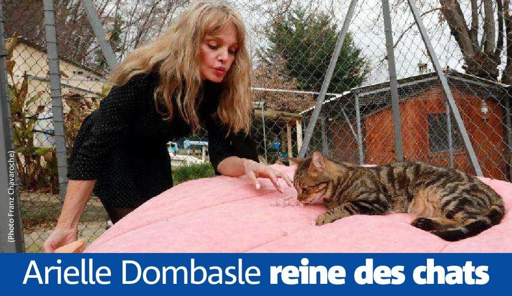 Arielle Dombasle reine des chats